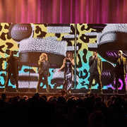 shania_nowtour_tampa060218_27