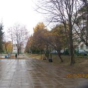 IMG-6071