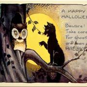 vintage-cat-owl-2