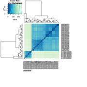 sample_heatmap1