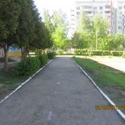 IMG-5787