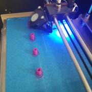 Batch roller print