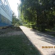 IMG_5951
