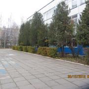 IMG-6082