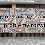 Wojciech_Stachura_prezentacja_do_wyst_pienia