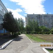 IMG-5795
