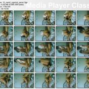 10_menit_ngentut_pacar_3gp_thumbs_2012_05_10_12_14_13.jpg