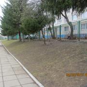 IMG-5720