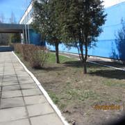 IMG_5736