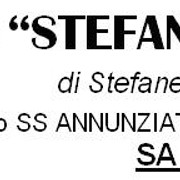 Stefan_cart