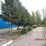 IMG_6025
