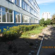 IMG_6003