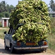 vehicules-ouidah-benin-1408549015-1272170