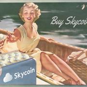 [Image: skycoin_poster.jpg]
