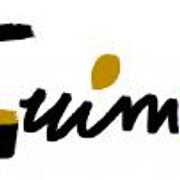 mini 997455 GUIMOLogo