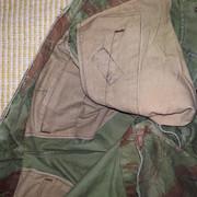 Un peu de camouflage Léopard - Page 6 IMG_0671