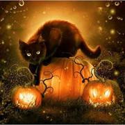 [Image: Halloween_Blk_Cat_Avatar.jpg]