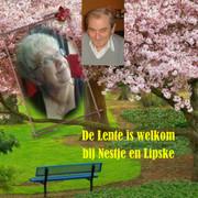 Spring_Lipske