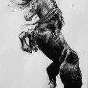 Horse-Pen-and-Ink