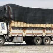 ford-cargo-turkey.jpg