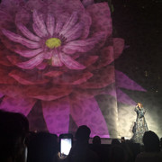 shania_nowtour_boston071118_8
