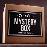 Tokai-mystery-box-III