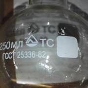 250_2.jpg