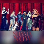 shania-nowtour-misc21