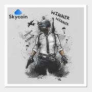 [Image: Skycoin_PUBGFinal.png]
