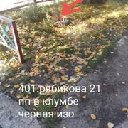 [Εικόνα: img_20181001_064311.jpg]