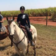 shania_brazil_horse081718_1
