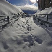 [Image: 01_fd_neige.jpg]